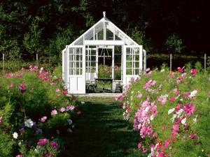En vacker modell växthus från Swedish Green House med träprofiler.