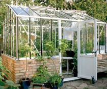 Vackert, engelskinspirerat växthus med en värmelagrande sockel i murat tegel.