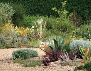 I grusträdgården förekommer ingen konstgjord bevattning alls.