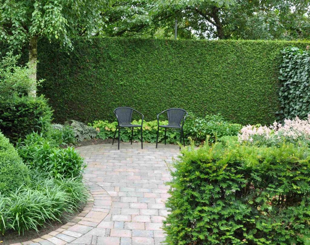 En bit häck kan skapa spänning i en öppen trädgårdsyta.