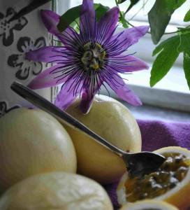 Det syrliga innanmätet i passionsfrukten äts som det är.