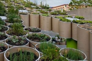 Stadsodlingen kan ta olika former, men handlar mest om kompakt odling på små arealer.