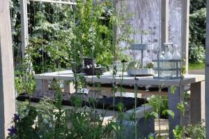 Klängväxter leds upp på vajer för att bilda ett grönt draperi.