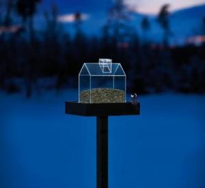 Ett självlysande fågelbord är ett måste för mig denna vinter.