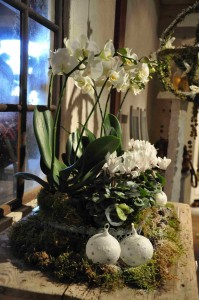 Vita orkidéer och cyklamen i ett vackert arrangemang till jul.