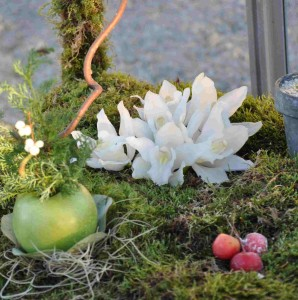 Mossa är mycket vackert i blomsterarrangemang, men inte helt problemfritt.