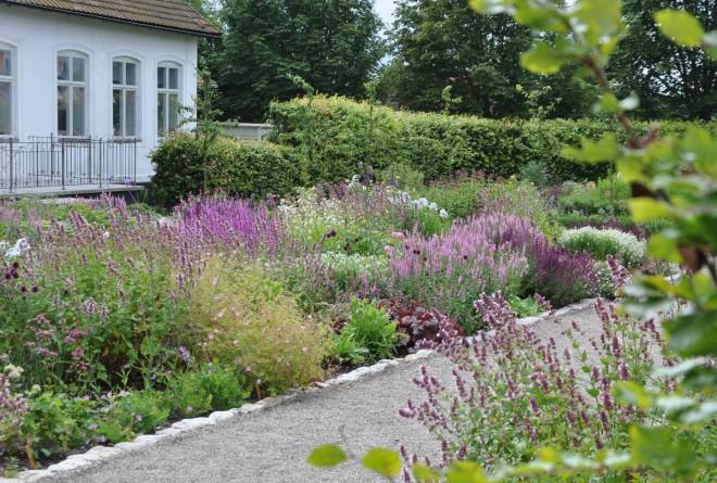 Perenner i samstämda färger med avvägda blomningstider kräver mycket planering.
