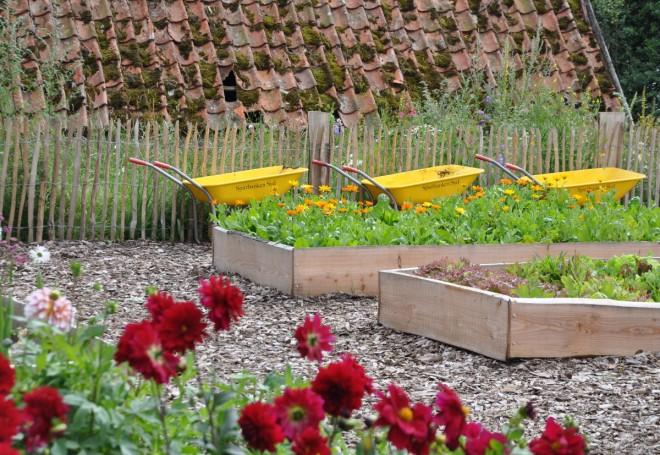 Köksträdgård med upphöjda bäddar och en botten av träflis.