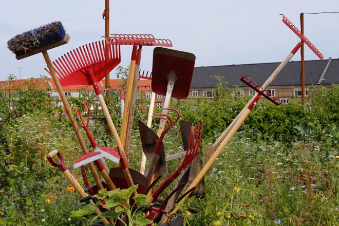 Takträdgården i Östergro sköts av medlemmarna och en anställd trädgårdsmästare.