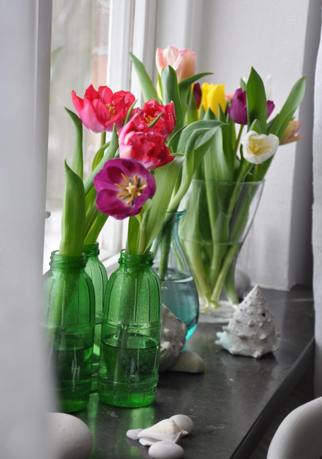 Tulpaner i blandade färger ger vackra buketter.