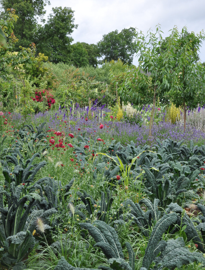 Kålväxter och blommor samsas i landet.