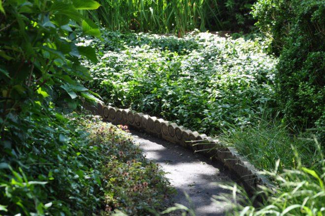 Plantera marktäckande växter istället för gräs på skuggiga ställen.