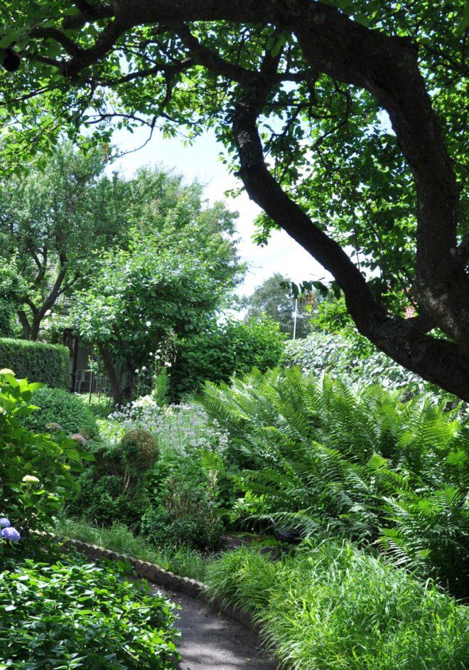 En grön trädgård behöver inte vara tråkig.
