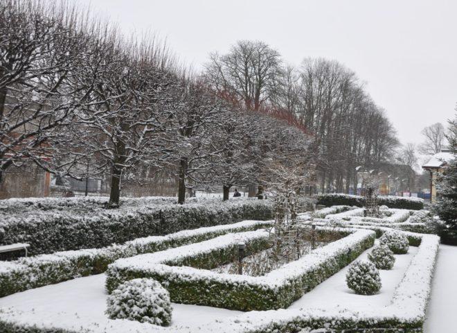 Vinterkänsliga växter ska ha en varm växtplats.