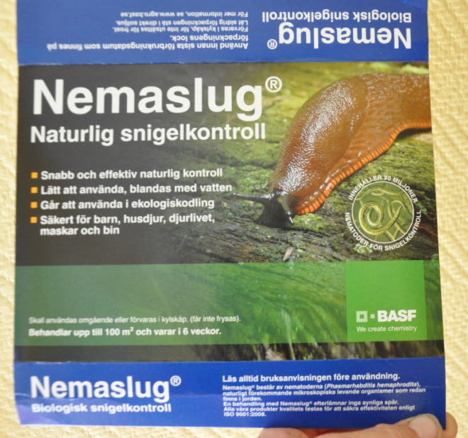 Nematoder vattnas ut och förgör sniglarna inifrån.