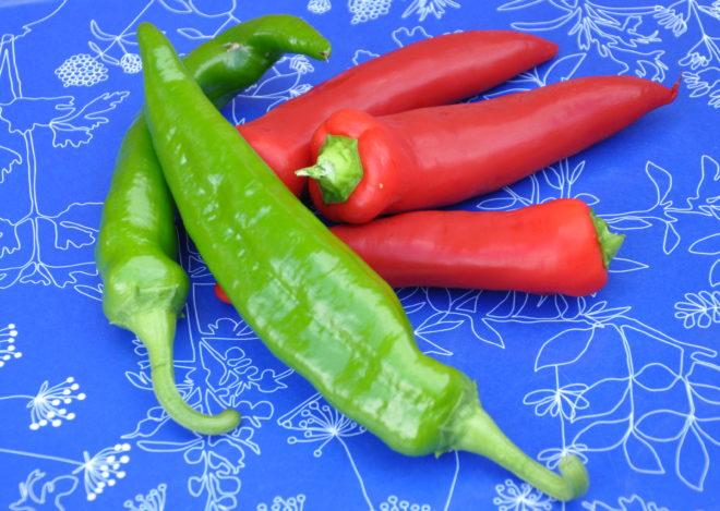 Chilifrukter skördade som gröna och röda.