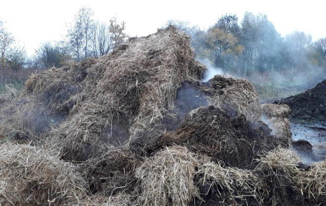 Greenspire trädgårdskonsult stallgödsel hästgödsel jordförbättring naturgödsel