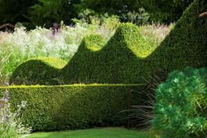 En härligt fantasifull häck med vågig form bryter starkt mot alla stela, klippta häckar. Le Jardin Plume är ett givet besöksmål i Frankrike för Greenspire Trädgårdskonsult.