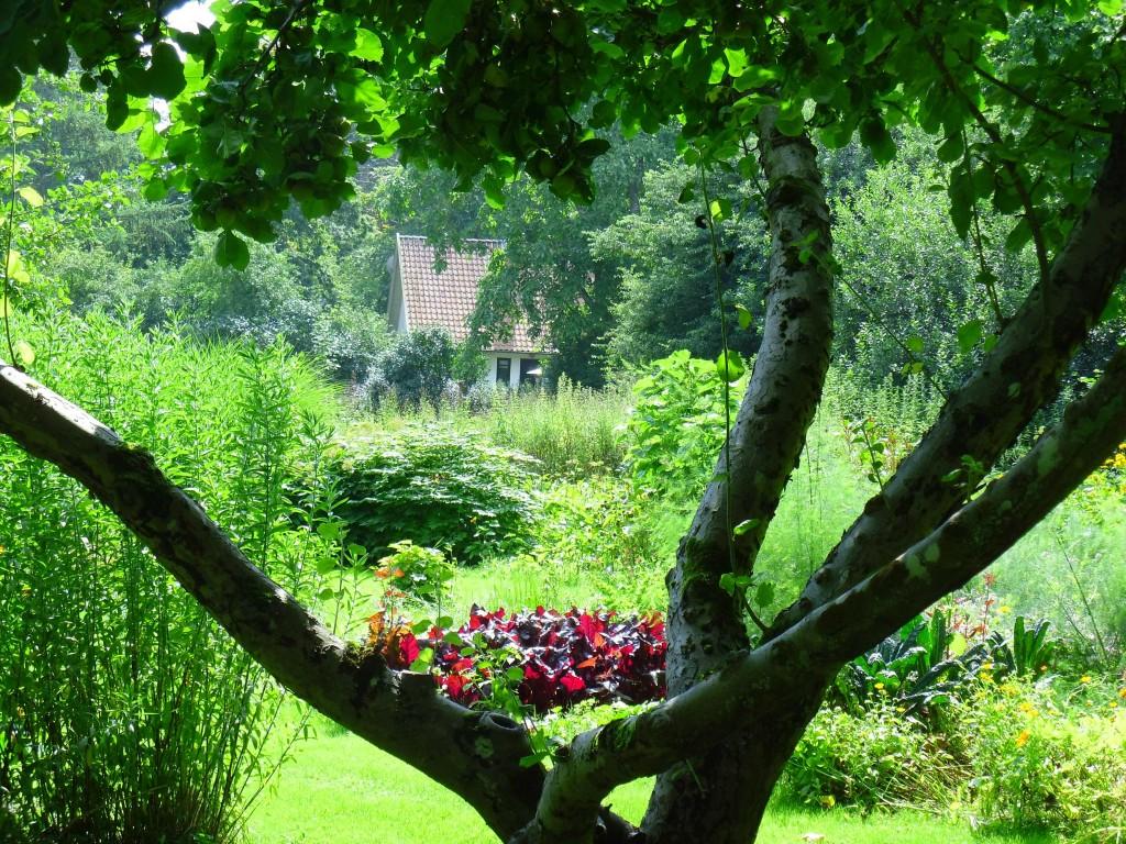 Frodig grönska i Karen Blixens have. Greenspire Trädgårdskonsult blickar in mot grönsaksodlingen.