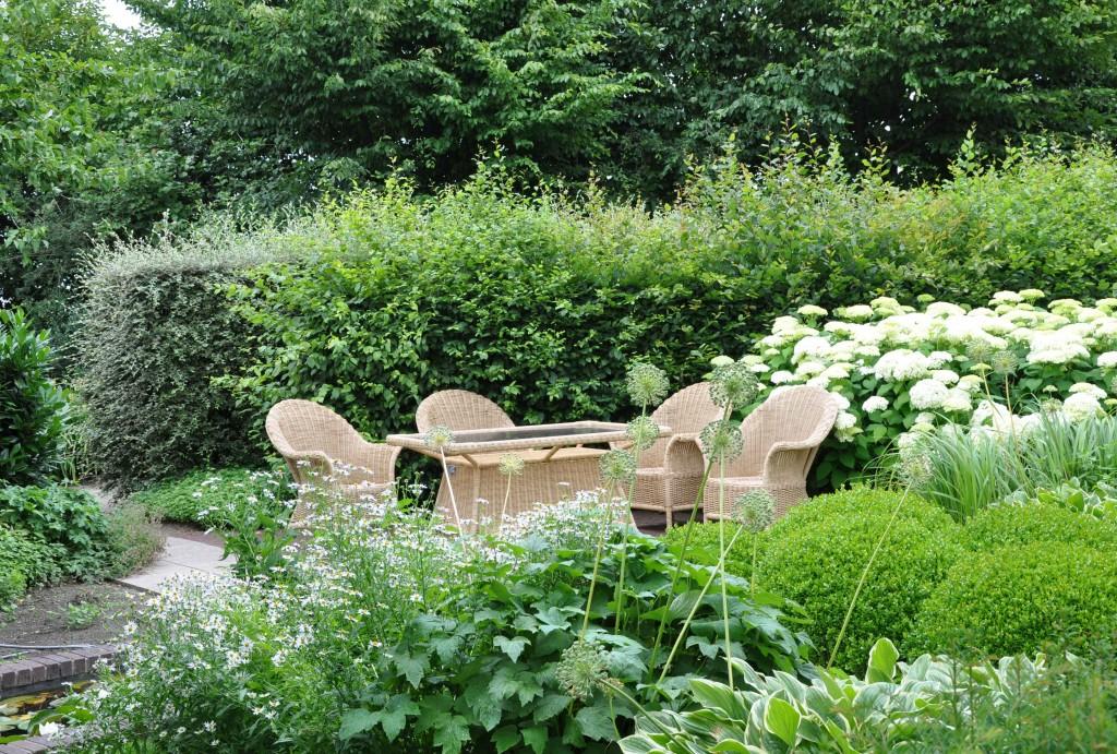 Vilsam trädgård i grönt och vitt med skyddande häckar.