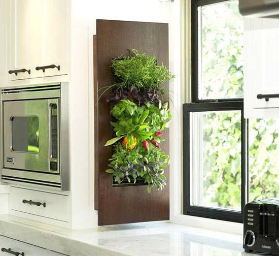 Genom att hänga upp kryddplantorna på köksväggen sparar du utrymme på arbetsbänken, men har ändå örterna när till hands.