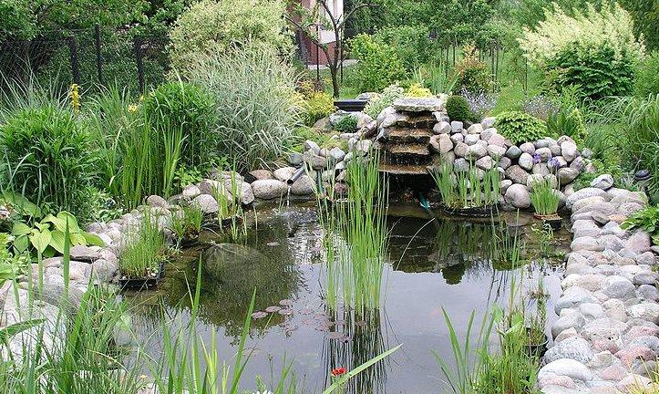 En större trädgårdsdamm med vattenfall och fiskar bidrar till en fräschare luft för allergiker.