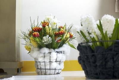Tulpaner i nätkorgar invändigt klädda med bomull skapar en ullig kontrast mellan de krispiga blommorna och den varma, mjuka bomullen.