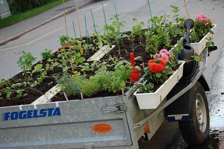 En ambulerande odlingsbädd körde ifjol runt i Stockholm för att puffa för fler odlingsmöjligheter i staden.