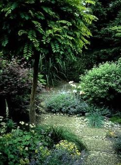 Klotrobinian passar i den mindre trädgården med skyddat läge och mycket sol.