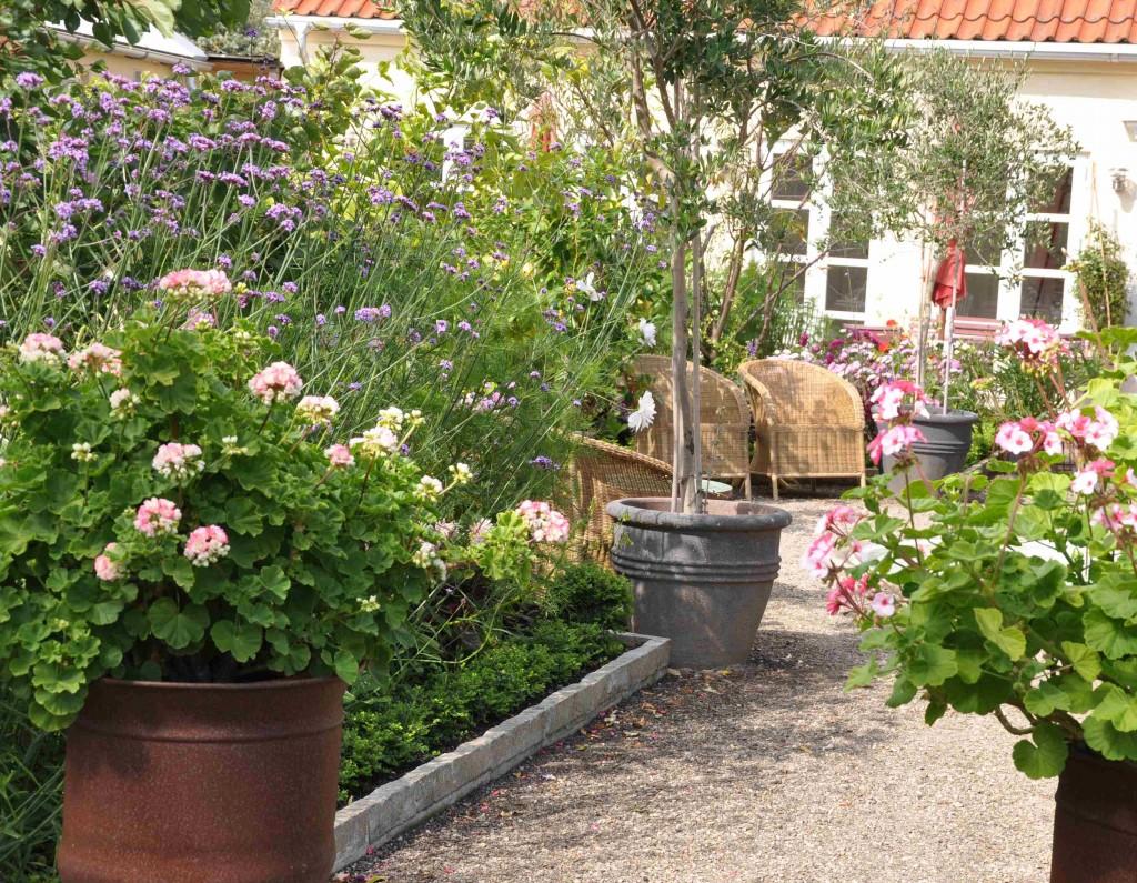 Den medelhavsinspirerade parterrträdgården innehåller många rabatter och krukor.