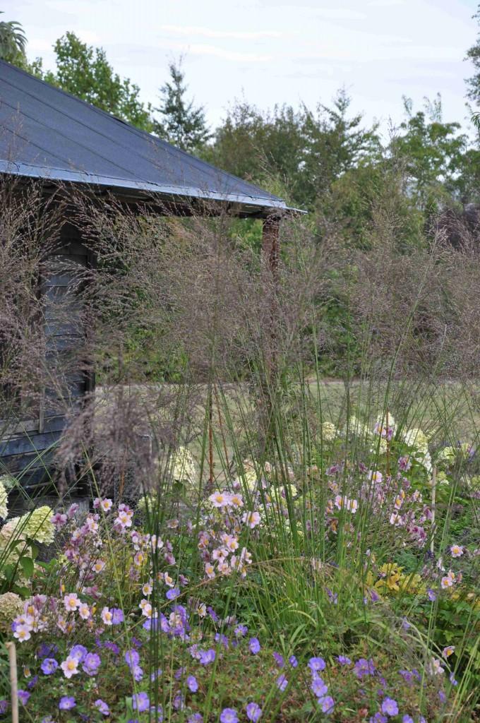 Höga gräs ger rabatten en extra dimension av höjd och rörlighet.