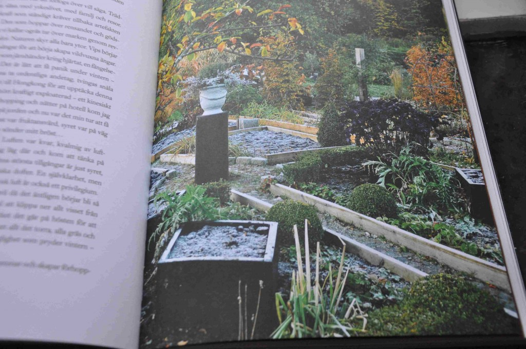 Alla fyra årstider porträtteras i boken och fylls på med historier från kolonilotten.