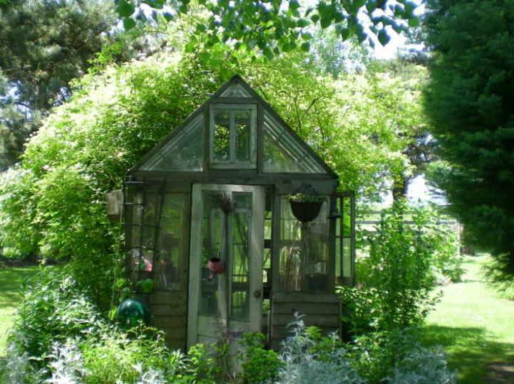 Ett växthus ska det bli fullt av växter som jag länge drömt om att odla.