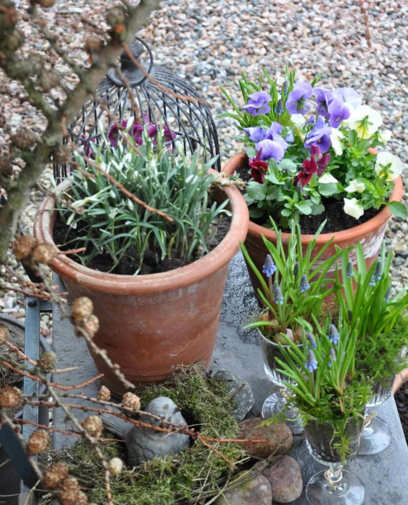 Grenar, mossa, ett gammalt fågelbo och så vackra blommor blir ett vackert välkomnande vid entrén.