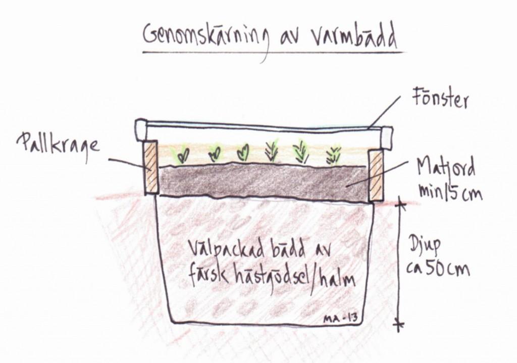 En varmbänk med färsk gödsel skapar värme när gödseln bränns ner.