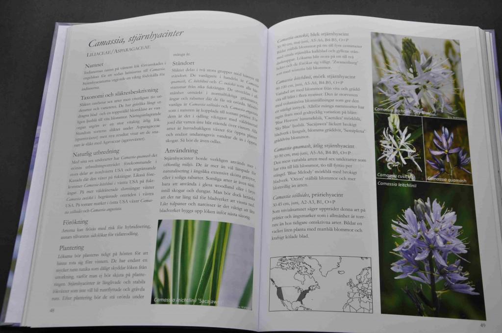 Varje släkte får minst ett uppslag i boken med beskrivningar och bilder.