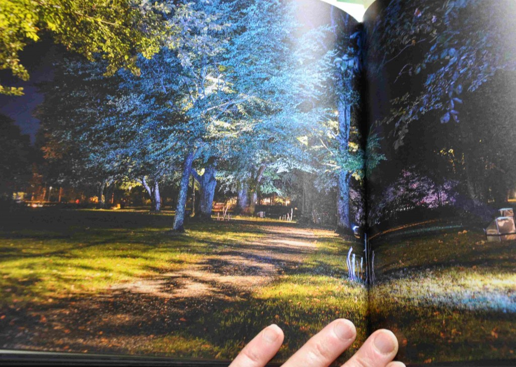 Belysningsboken ger tips för trädgårdsplanering hur man ljussätter trädgården under den mörka årstiden.