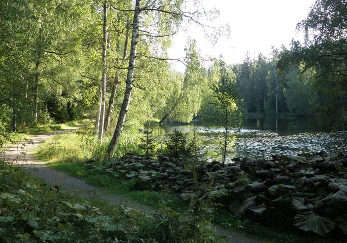 Utkanten av parkmarken kan hålla skogskaraktär.