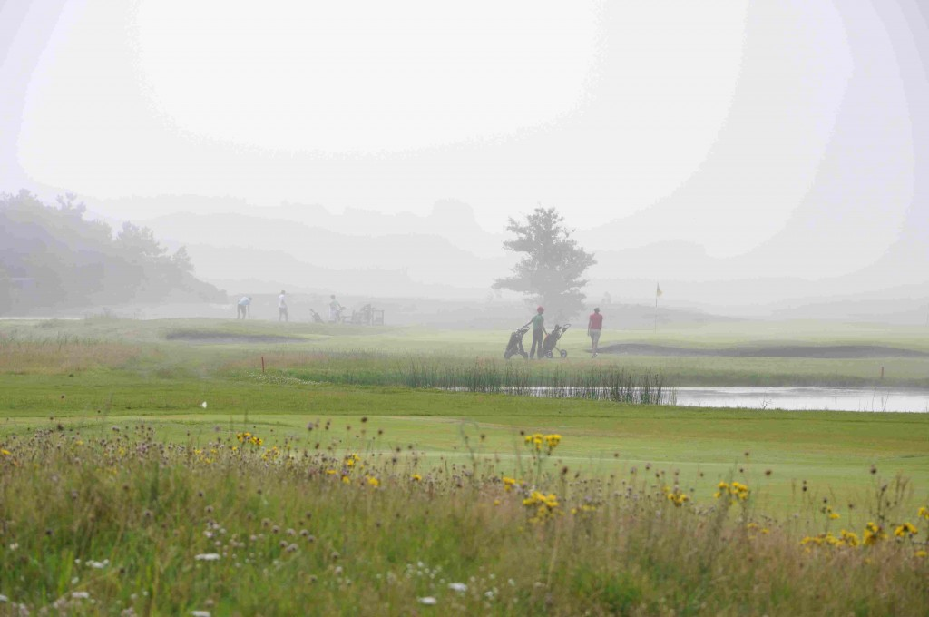 Även golfbanan behöver träd för att bli attraktiv.