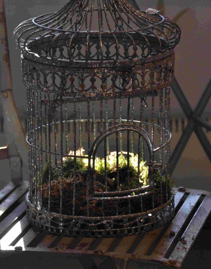 En rostig fågelbur med lite mossa och kanske ett ljus blir en fin dekoration.
