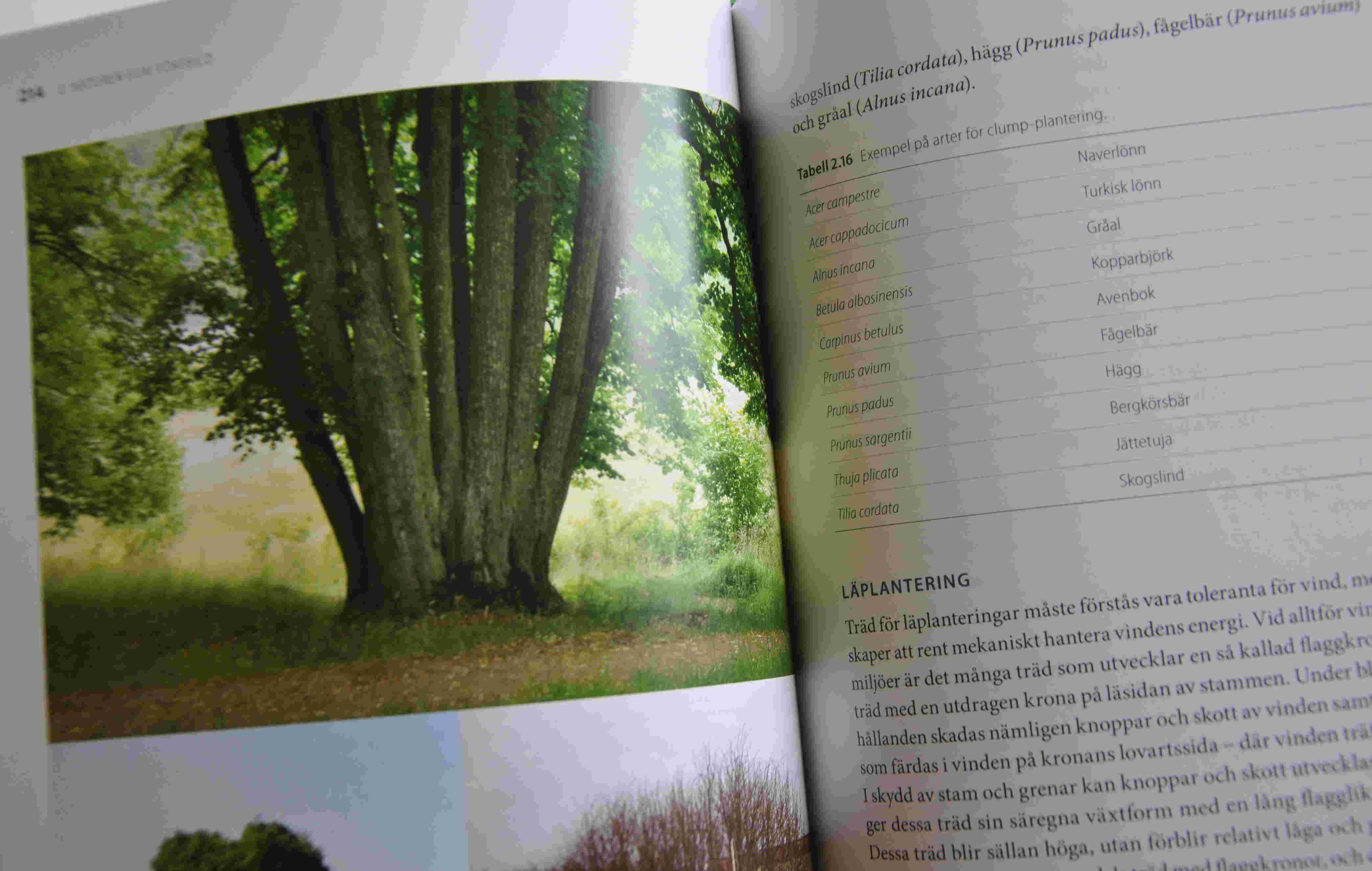 Tabeller och växtlistor finns det gott om i boken.