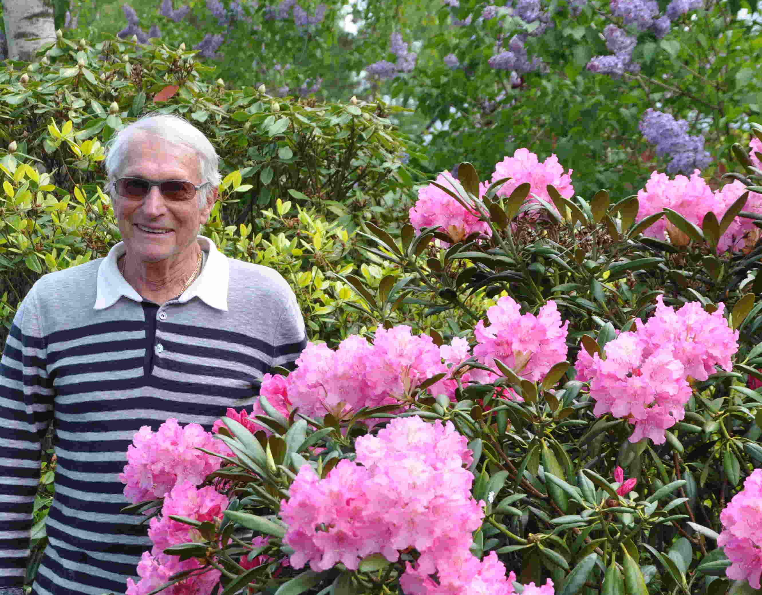 Rhododendron vill ha sur jord och luftig, torvrik jord.
