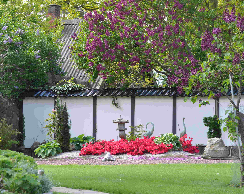 Azaleor är lövfällande rhododendron som klarar soliga lägen.